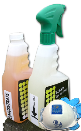 Kit 1 Mould Killer Spray